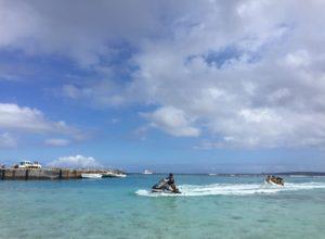 【本日配信】水納島編:WEBラジオ「洞窟バラエティショー」
