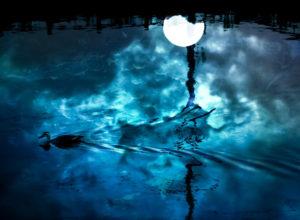 自己存在の月【満月のエナジーリーディング】