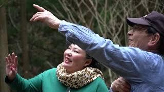 【動画】観るヒーリング「石暦」:高知県「幣木ヶ滝」